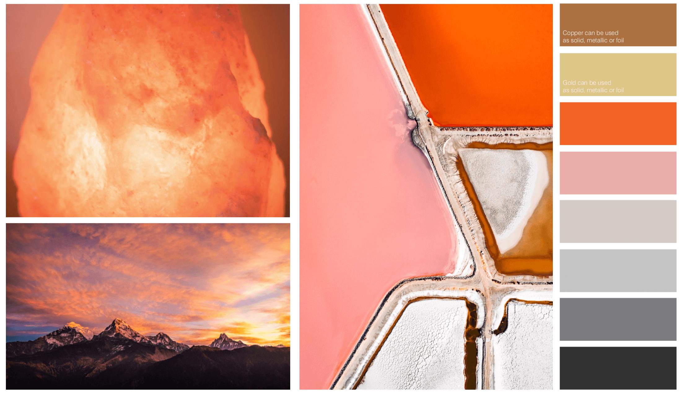 Branding, colour palette, TUBU Collective