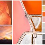 Branding colour palette